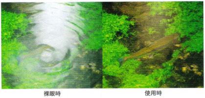2008-06-02 19;27;10.jpg